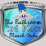 Basic Bathroom 2ed place silver badge